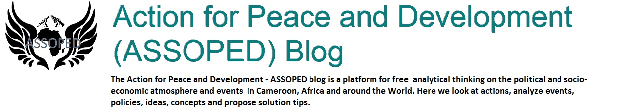 Action for Peace and Development (ASSOPED) Blog