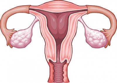 jamu tradisional pembersih rahim