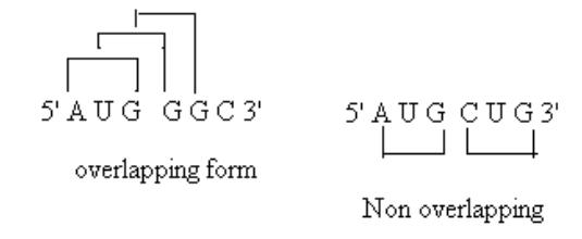 Genetic Code: Definition, General Properties and Charactertics