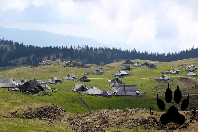 huttes-bergers-velika-planina-slovenie