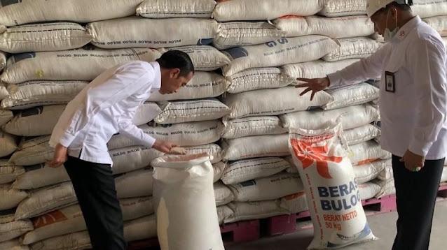 Kritik Bulog Impor 1 Juta Ton Beras, Indef: Akan Hancurkan Harga di Tingkat Petani