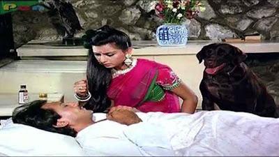jackie shroff teri meherbaniyan movie, teri meherbaniyan film, teri meherbaniyan 1985 unknown facts, jackie shroff movies, bollywood movie, hindi movie, teri meherbaniyan facts, bollywood unknown facts, bollywood trivia. teri meherbaniyan unknown facts in hindi, teri meherbaniyan movie verdict, teri meherbaniyan starcast, teri meherbaniyan release date, teri meherbaniyan trivia, poonam dhillon movie, k. c. bokadia movie, amrish puri movie, teri meherbaniyan movie dog name, मनोरंजन की खबर, Entertainment News in Hindi, Bollywood News in Hindi, Bollywood Gossip, Movie News, latest entertainment news, मनोरंजन समाचार, एंटरटेनमेंट न्यूज़, breaking news in hindi, latest bollywood movies update, upcoming bollywood movies, social18