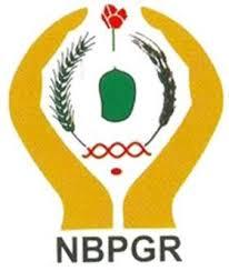 NBPGR 2021 Jobs Recruitment of Upper Division Clerk Posts