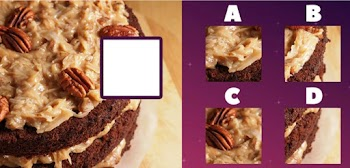 find the missing bite quiz answers 100% score gimme more quiz