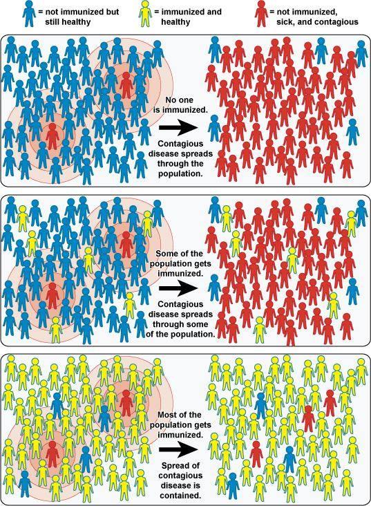 vaksin covid 19 herd immunity Fatwa vaksin Vaksin dalam perubatan islam Isu vaksin malaysia Isu halal Haram vaksin sejarah vaksin dalam islam vaksin campak halal atau haram