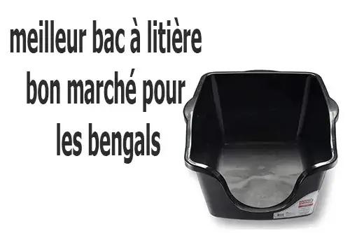 best cheap litter box for bengals