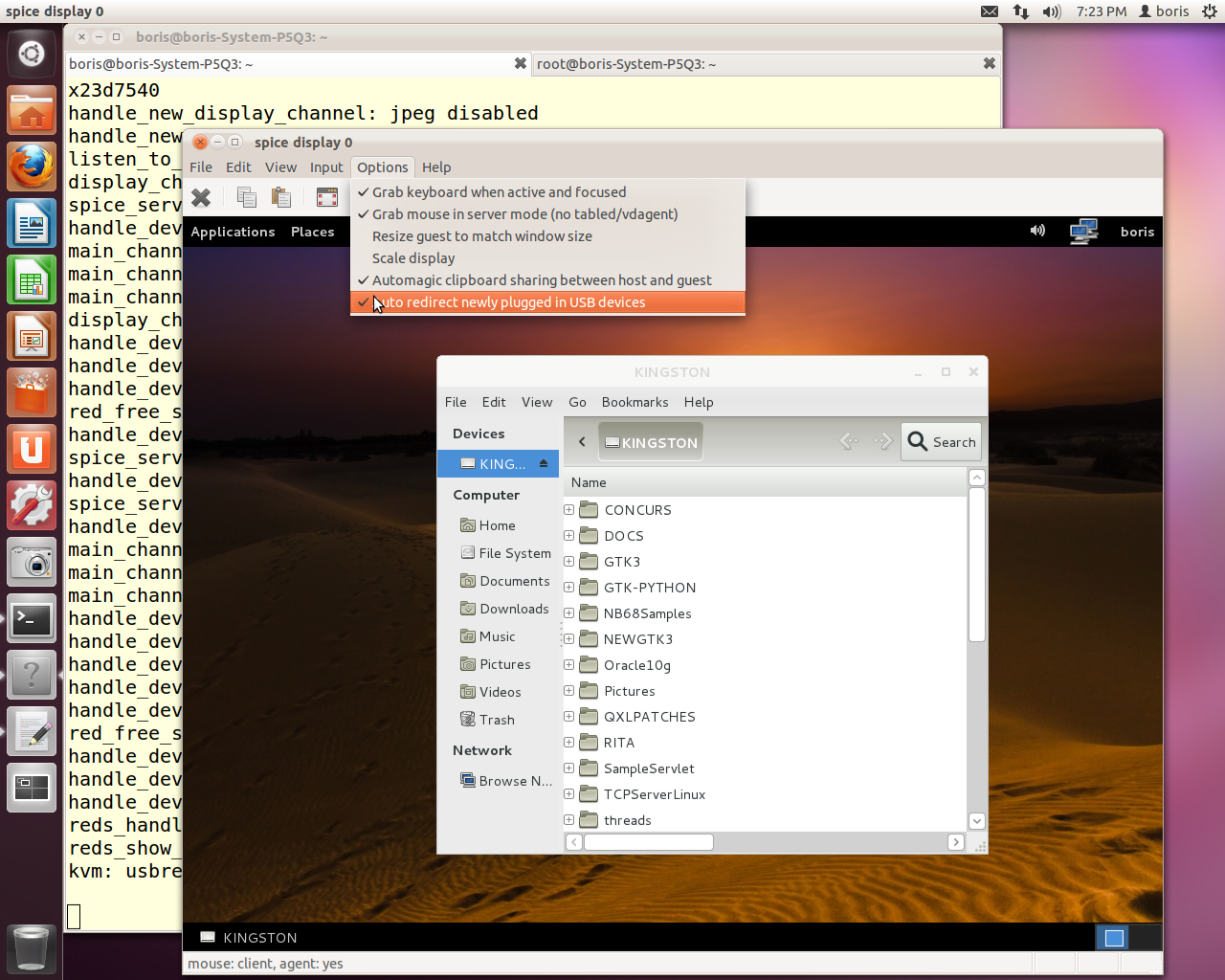 Xen Virtualization on Linux and Solaris