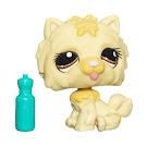 Littlest Pet Shop Singles Chow Chow (#1058) Pet