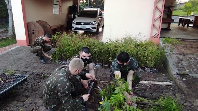 Exército Brasileiro retira mudas no Horto Florestal da Creluz