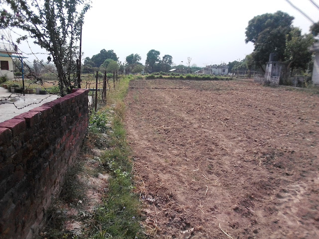 Two Bigha Land For Sale at Sneha Kotdwar Uttarakhand