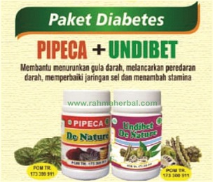 Pipeca dan undibet Paket diabetes