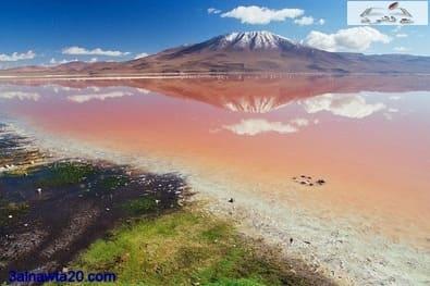 بحيرة اللاجون الأحمر بوليفيا- laguna colorada -أمريكا الجنوبية