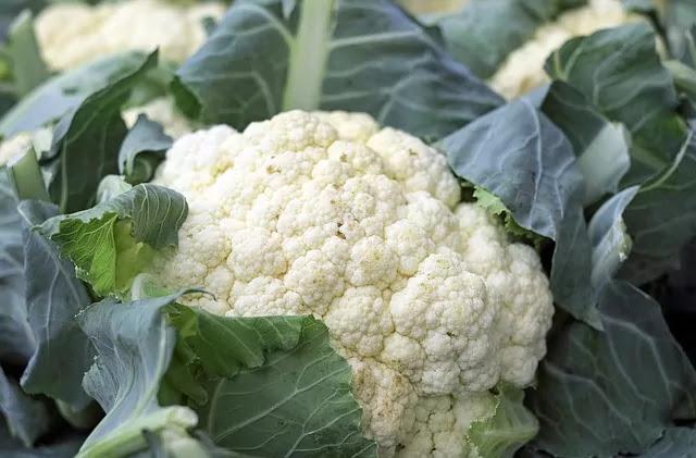 mature cauliflower