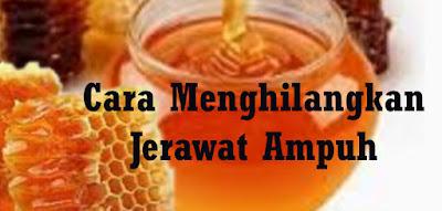 Gambar ilustrasi madu madu sebagai obat jerawat