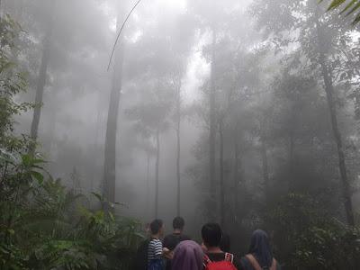 Kabut Tebal Menyelimuti Gunung Sanggabuana