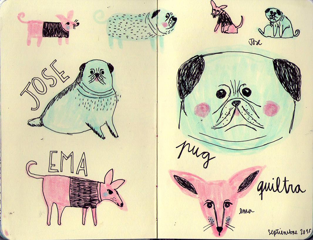 Libreta Para Dibujo: Carolina Ríos Ilustraciones Mi Libreta De Dibujo