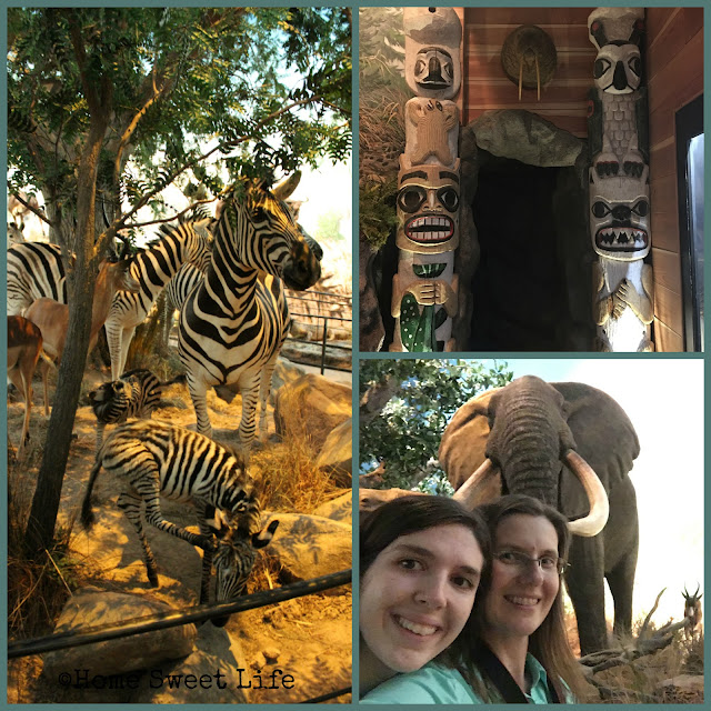 Wonders of Wildlife, Johnny Morris, Wildlife Galleries, Springfield MO, road trip, family trip, Bass Pro Shops, Inuit, African animals