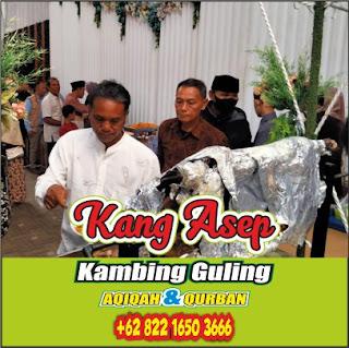 Kambing Guling Murah Setiabudi Bandung, kambing guling setiabudi bandung, kambing guling setiabudi, kambing guling bandung, kambing guling,