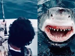 Un joven pescaba a bordo cuando se dio cuenta que un tiburón blanco  nadaba en su dirección