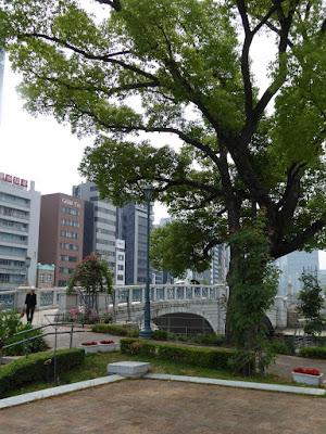 【大阪市北区】中之島公園のバラ園 ばらぞの橋