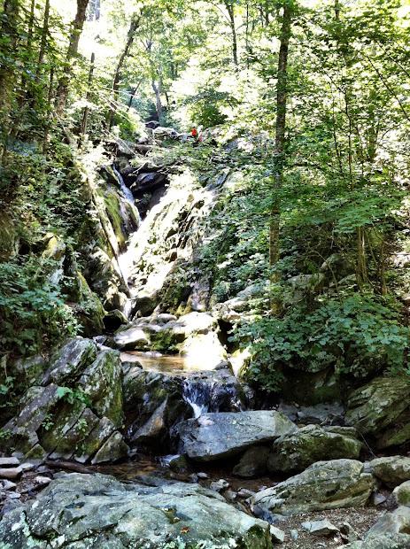 Dark Hollow Falls Shenandoah National Park