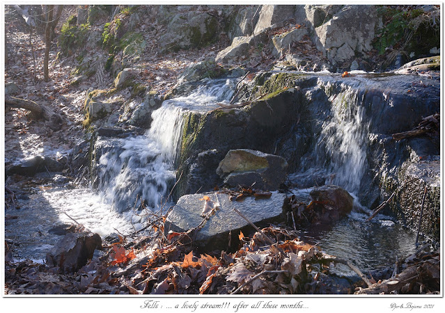 Fells: ... a lively stream!!! after all these months...