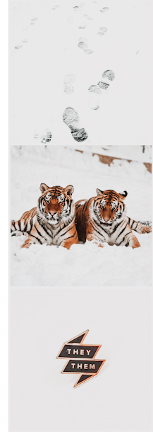 when the tiger came down the mountain nghi vo aesthetic