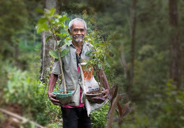 Mbah Sadiman, Pecinta Alam Penggerak Penghijauan di Wonogiri