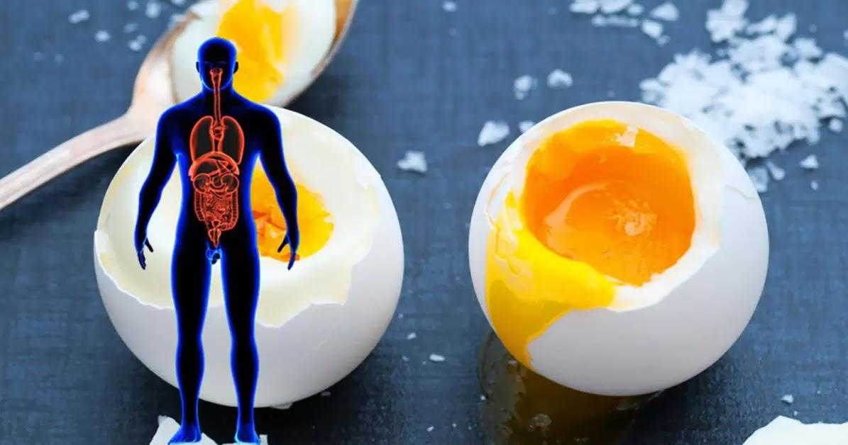 Isto é o Que Acontece ao Seu Corpo Quando Você Come 3 Ovos Por Dia