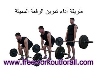 تمرين الريفعة المميثة لتضخيم عضلات الارج و الفخد