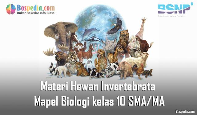 Materi Hewan Invertebrata Mapel Biologi kelas 10 SMA/MA