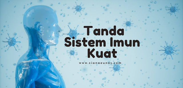 Tanda sistem imun kuat