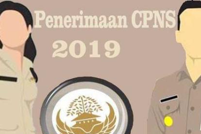 Tes CPNS 2019 Akan Dibuka Oktober: Ini Syarat, Cara Daftar dan Gajinya