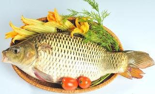 Nấu cháo cá