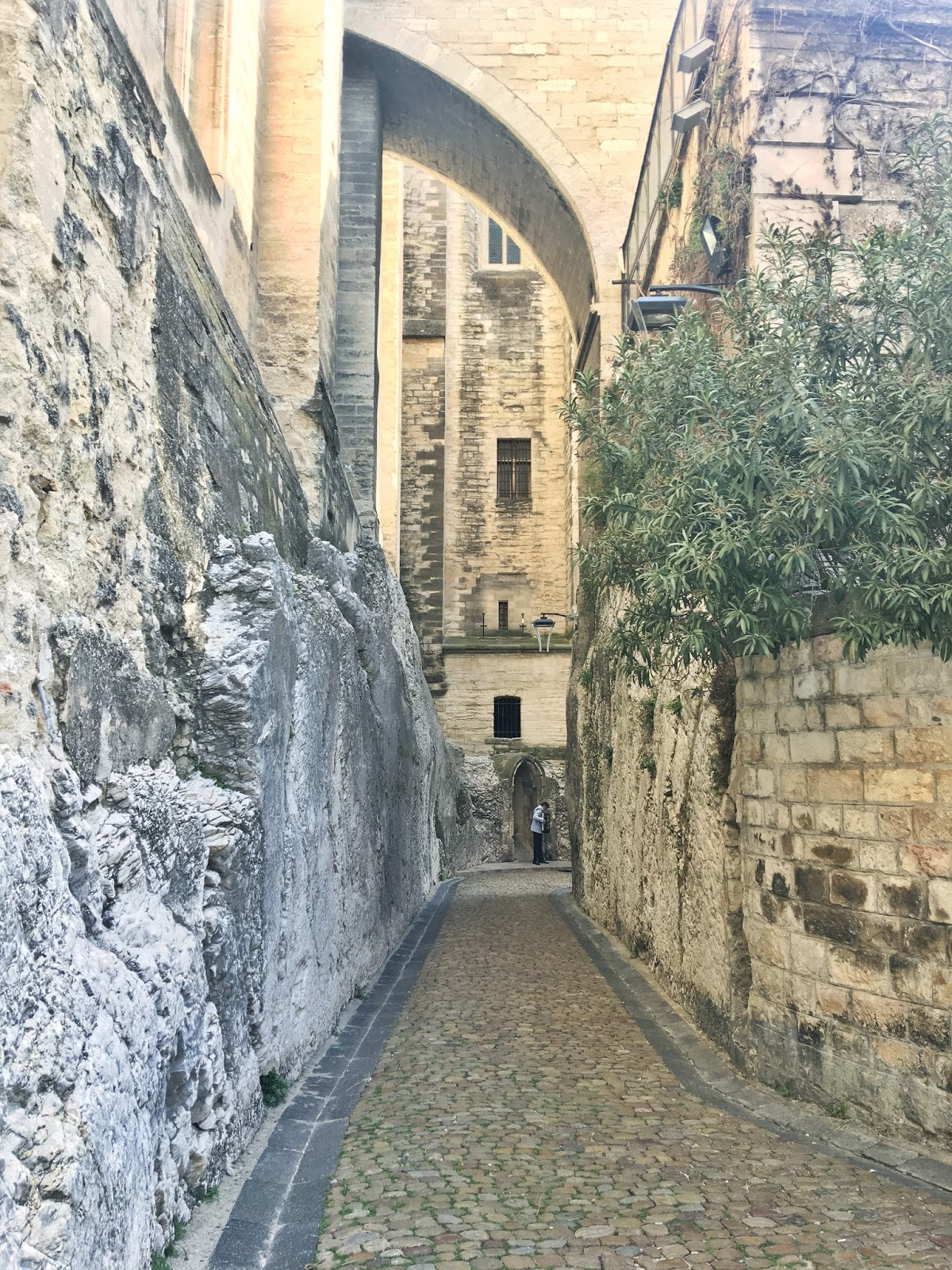 Things to do in Avignon, France | Travel