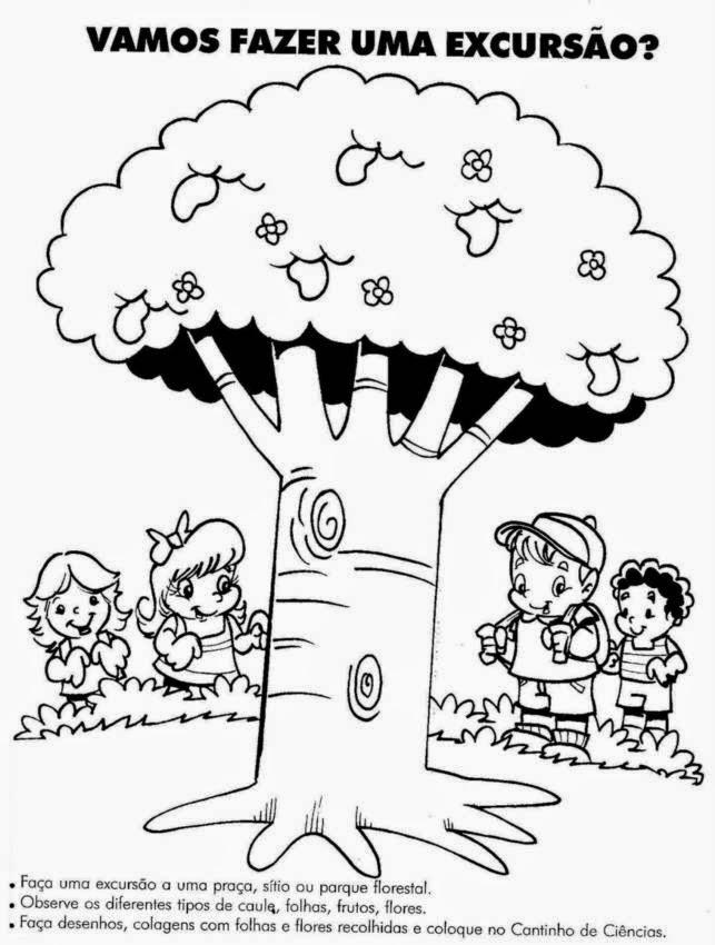 Desenho De Arvore Para Imprimir