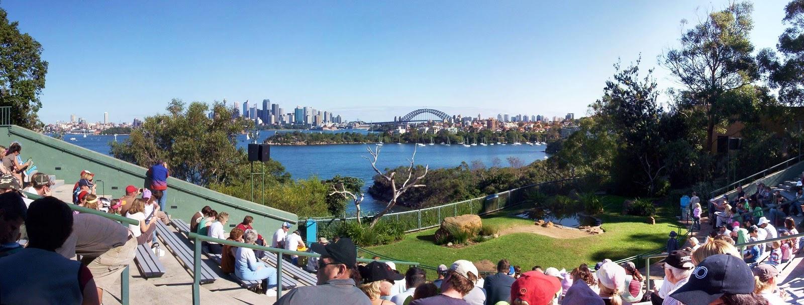 雪梨-景點-推薦-塔龍加動物園-旅遊-自由行-澳洲-Sydney-Taronga-Zoo-Travel-Australia