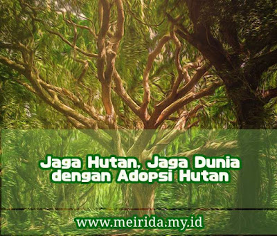 Adopsi hutan