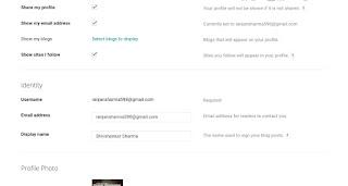 Bllgger profile filling