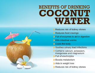 manfaat sehat buah kelapa