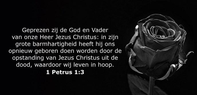 Geprezen zij de God en Vader van onze Heer Jezus Christus: in zijn grote barmhartigheid heeft hij ons opnieuw geboren doen worden door de opstanding van Jezus Christus uit de dood, waardoor wij leven in hoop.