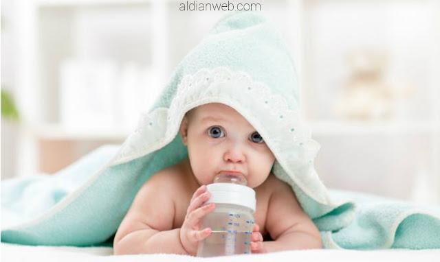 Rekomendasi Susu Formula Terbaik untuk Bayi