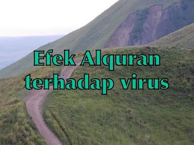Efek Alquran terhadap virus
