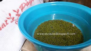 Cara tanam sayur taugeh, tauge kacang hijau,