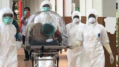 Para Peneliti Temukan Senyawa Hesperidin, Yang dapat mencegah Virus Corona Berkembang Biak