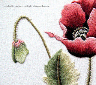 Close-up of elements of the poppy project including the bud, leaf, stem, petals, and centre