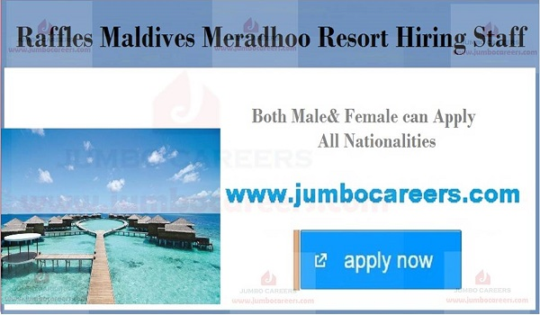 Maldives jobs with salary, Urgent Maldives jobs, Raffles Maldives Resort Jobs 2019 |