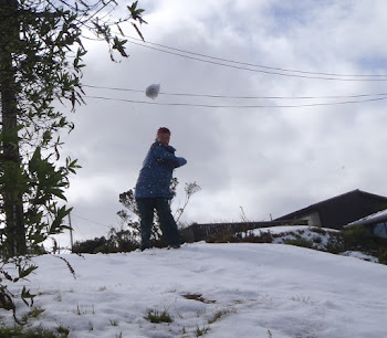 Snowball shot (I missed)