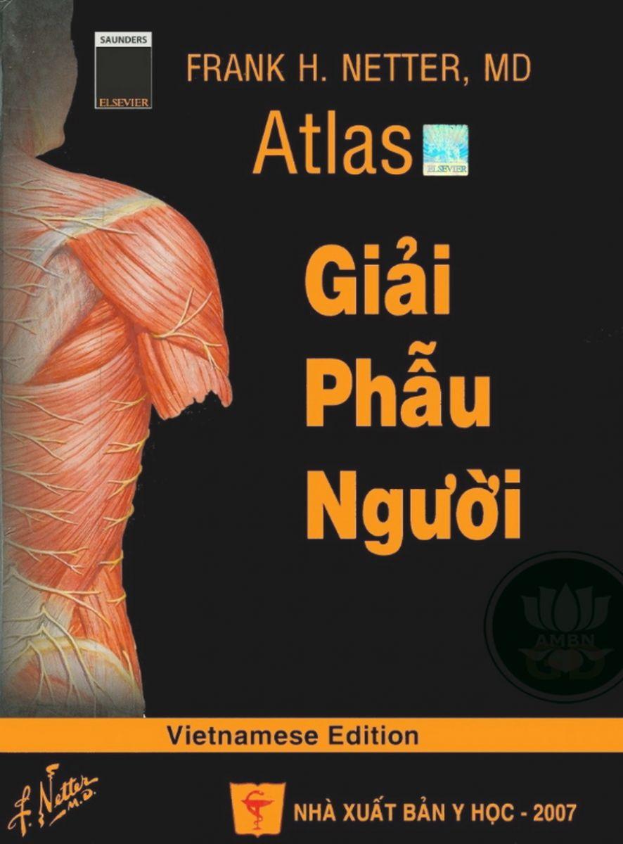 Atlas Giai Phau Nguoi Netter Epub