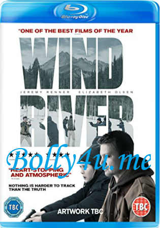 Wind River 2017 BRRip 300MB English 480p ESub Watch Online Full Movie Download bolly4u